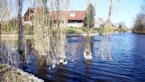 Fraaie speling der natuur met bevroren fonteinwater