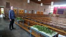 Veel animo voor palmtakjes ophalen in Mariakerk
