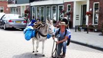 Voetreis met ezel van Parijs naar Groningen