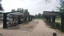 Grappenmaker actief bij busstation Edam